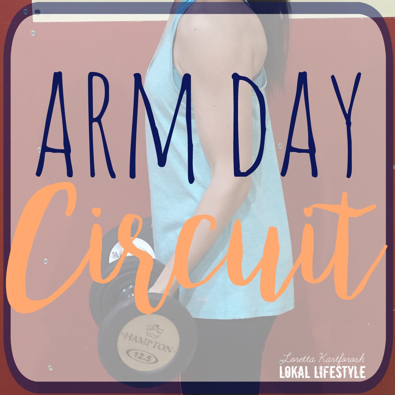 Workout Circuit || Arm Day Part 1
